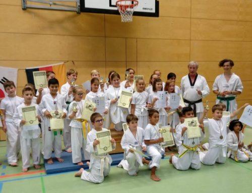 Taekwondo Abschlussveranstaltung zur Sommerpause.